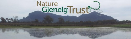 NGT logo with wetland