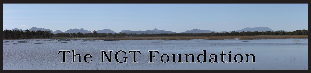 NGT Foundation Banner