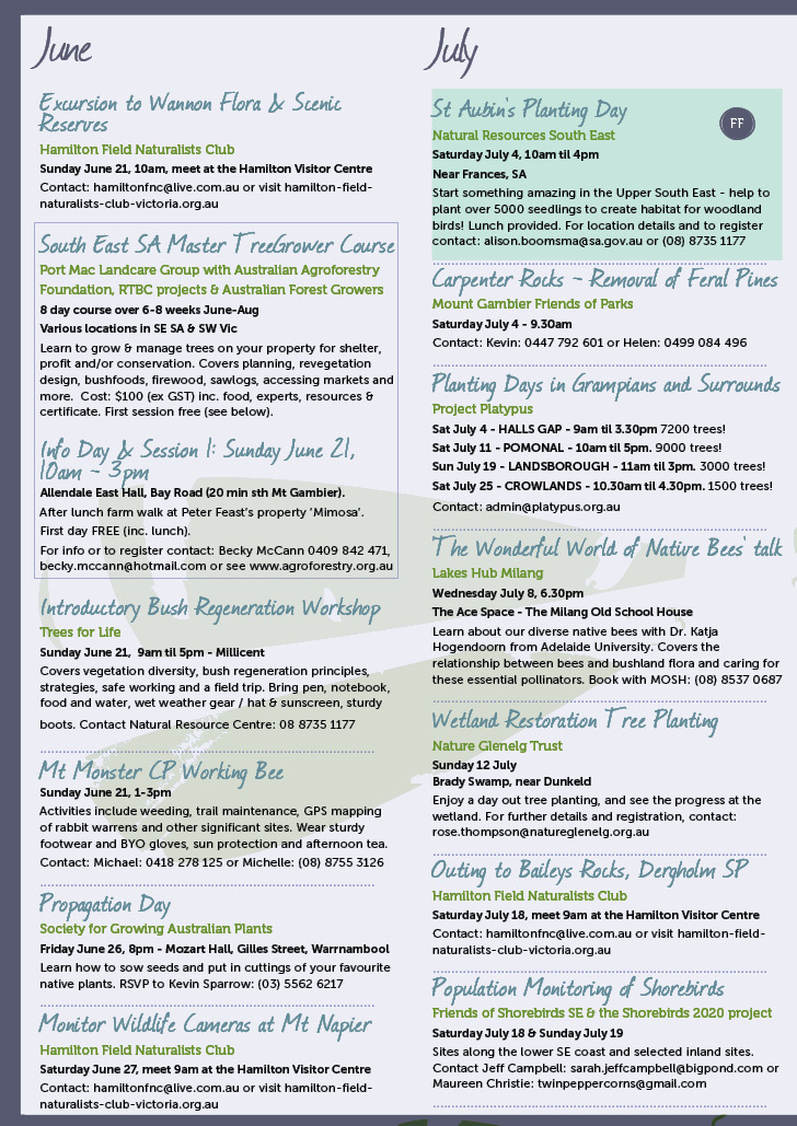 Winter Environmental Events Calendar Page 2