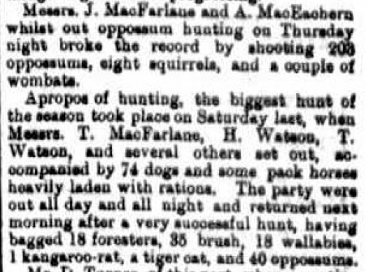 Correspondents report from Strathdownie: 2nd September 1893 - Excerpt from the Border Watch, 9th September 1893.