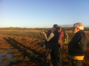 Scoping out birds on the wetland fringe