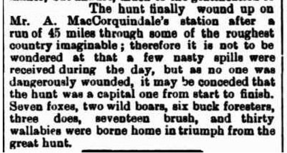 The Border Watch - Strathdownie correspondent news - 8th August 1894
