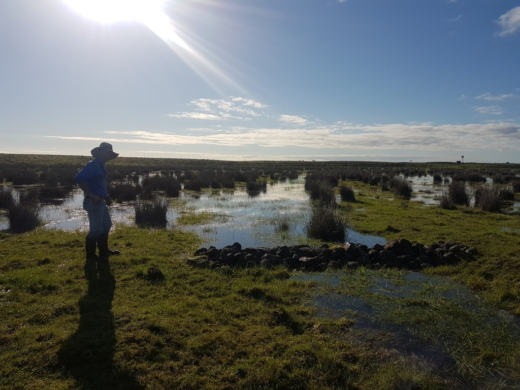 Aringa North beef farmer Hoges, admiring the wet flats and effectiveness of the weir.