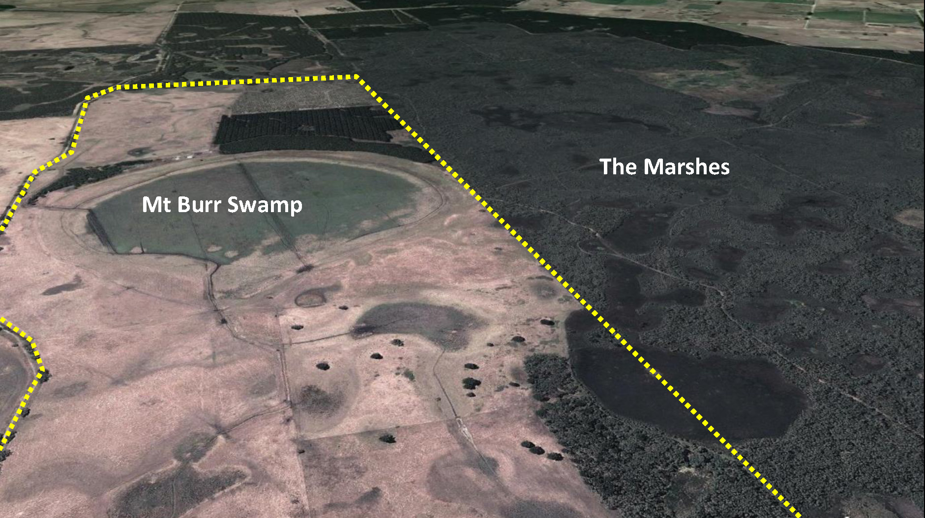 The Proposed Mt Burr Swamp Habitat Restoration Reserve
