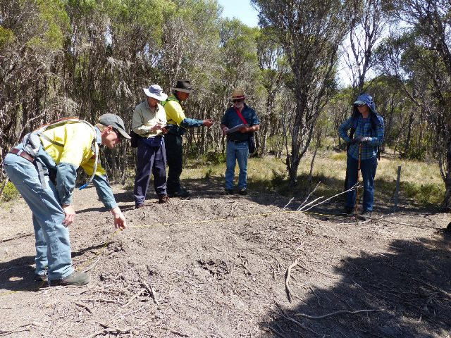 Measuring and taking notes of a mound in Gum Lagoon CP
