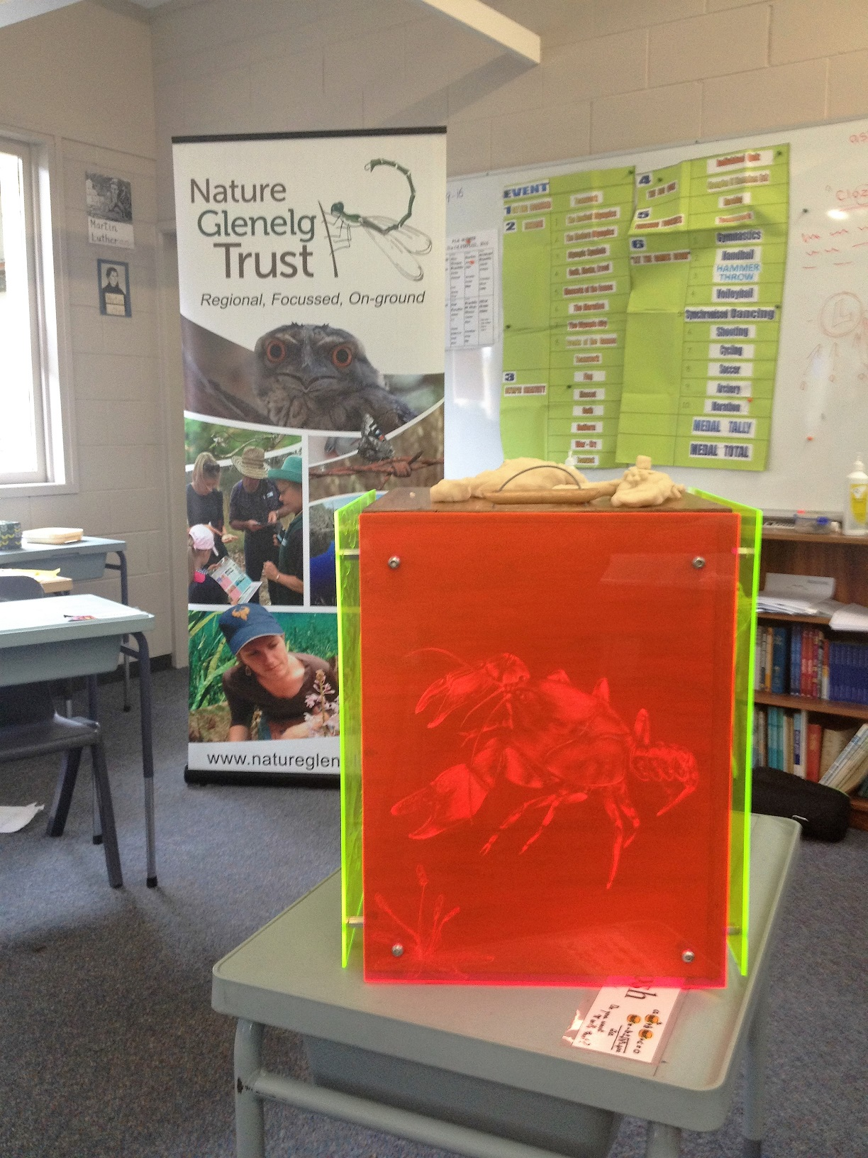 NGT's etched Burrowing Cray Education Toolbox, created by a regional artist