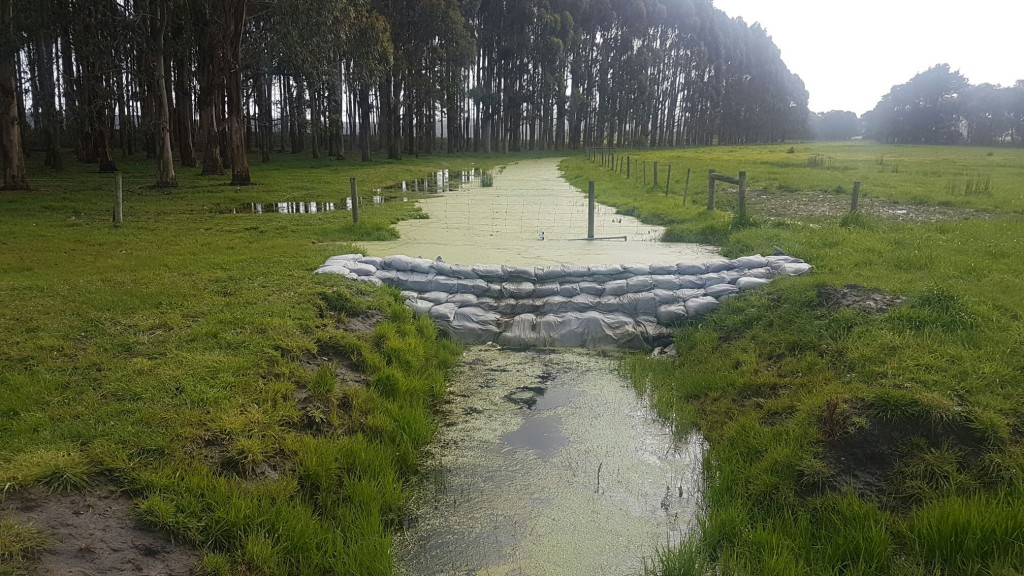 Levels in the swamp have been increased by 55 cm as a result of this temporary structure on the outlet drain.