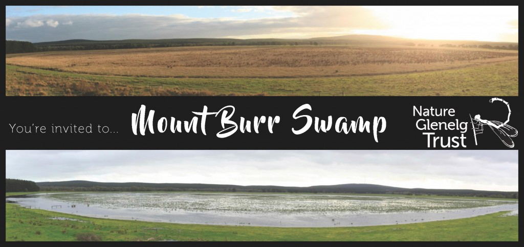 mt-burr-swamp-invitation-to-supporters_page_1