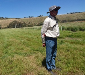 Chris Findlay, from Flora Victoria - the grassland experts