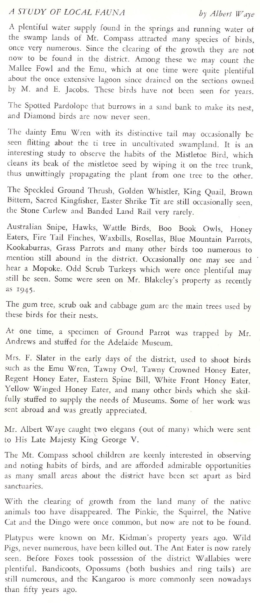Albert Waye's recollections of the fauna of the Mount Compass district - as recorded in the town history book in 1946.
