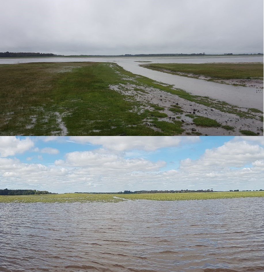 Green Swamp, in the southern Grampians district near Glenthompson. The maximum retention level in the wetland before (above) and after (below) restoration works is shown. The swamp has filled again this year for the time in decades, since it was drained.