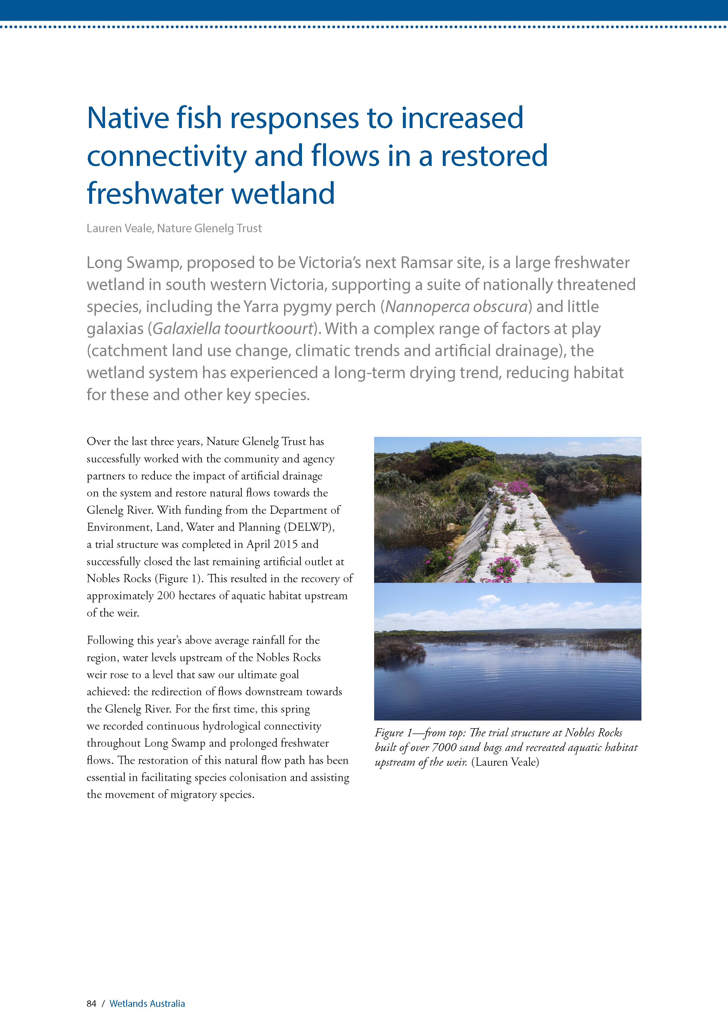 Long Swamp fish article - Wetlands Australia Vol 29
