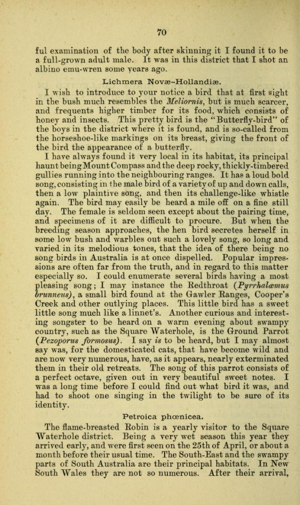 Page 2 of an article by F. W. Andrews in the Transactions of the Royal Society of South Australia (1883)