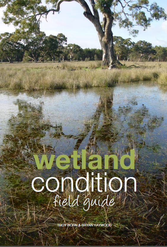 Wetland.Field.guide