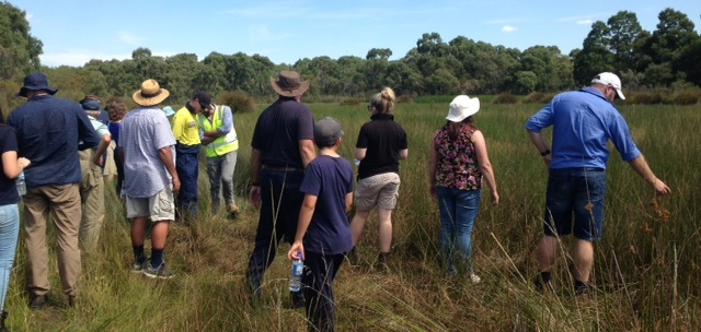 Participants looking over a very high condition wetland on boundary between The Marshes NFR and NGT property (Mt Burr Swamp)