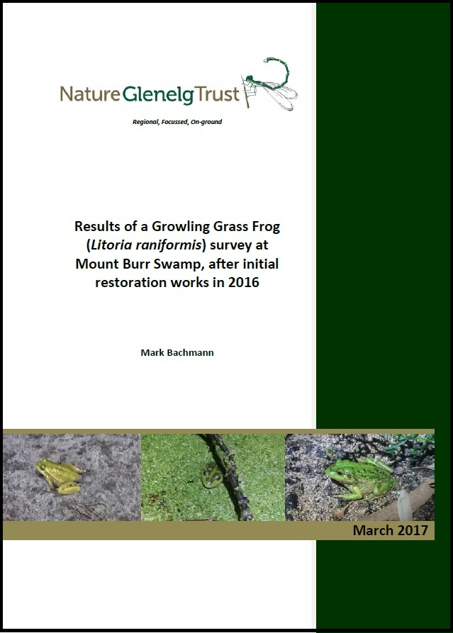 Cover of the recently completed report on the Growling Grass Frog population at MT Burr Swamp. Click on image to download the report.