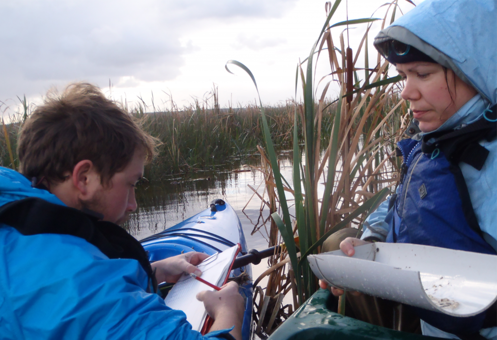 NGT staff members Cory Young and Nicole Mojonnier sorting the catch at 'Ewings' - a site in the middle of Long Swamp