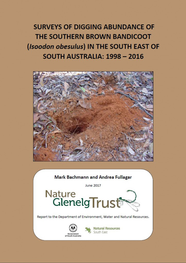 Cover of the Southern Brown Bandicoot digging abundance survey report. Please click for the link to the pdf copy.