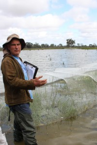 Damien Cook discussing the use of netting to protect vegetation from waterbirds.