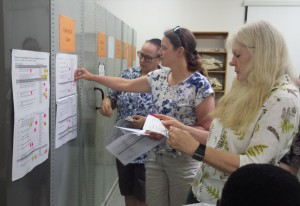 Bat experts prioritising management actions at a recent workshop