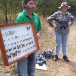 Bryan and his collection of butterflies from the local area