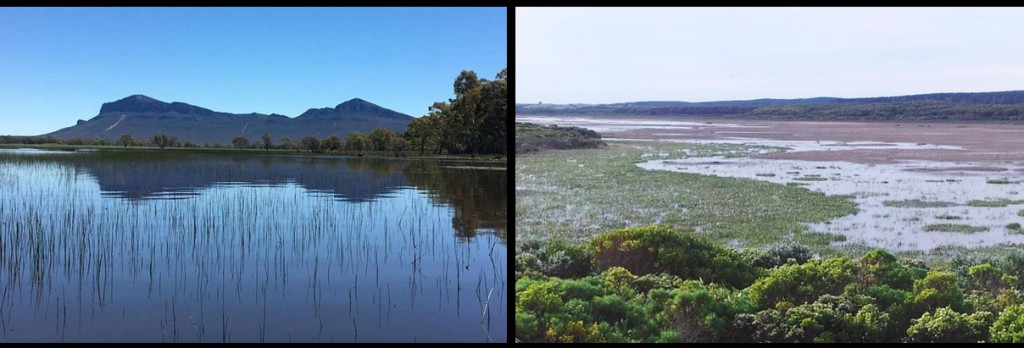 The case study sites: Upper Wannon river wetlands (Brady Swamp, left) and Long Swamp (right)