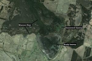 Gooseneck-Swamp-Landscape-context-300x235