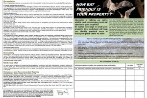 How Bat Friendly Is Your Property? front and back cover