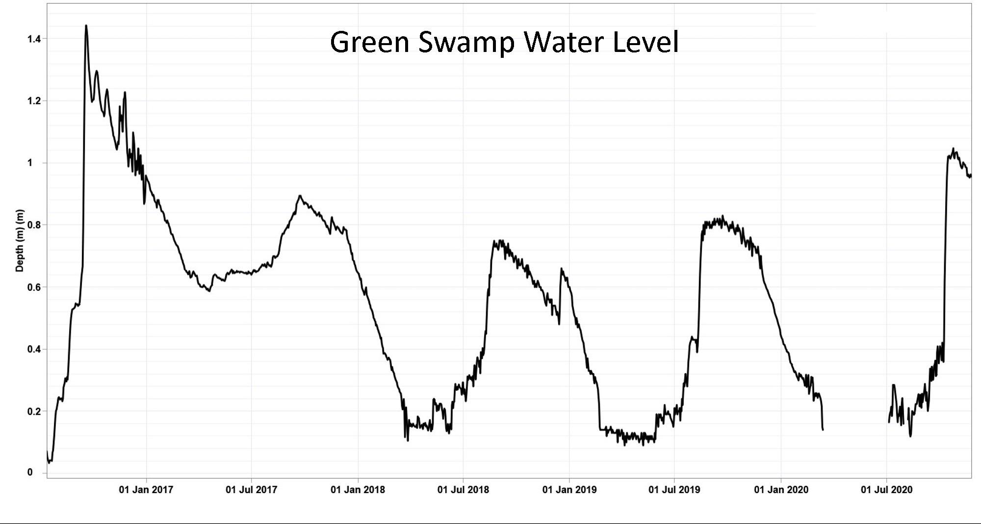 Green Swamp Nov 2020